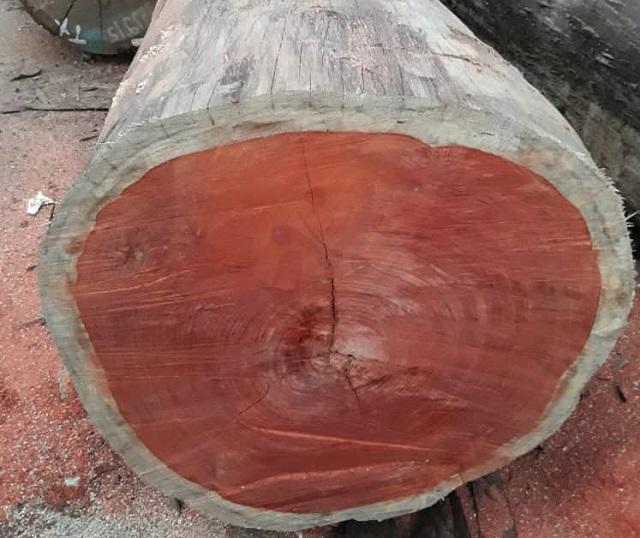 Gỗ hương có thớ gỗ nhỏ và mùi hương thơm thoang thoảng đặc trưng.