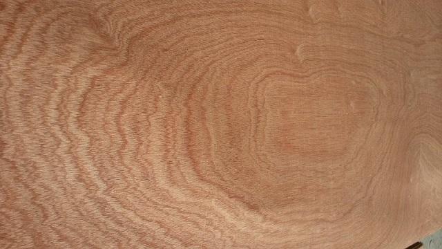 Vân gỗ được tạo ra từ quá trình biến đổi lý hóa