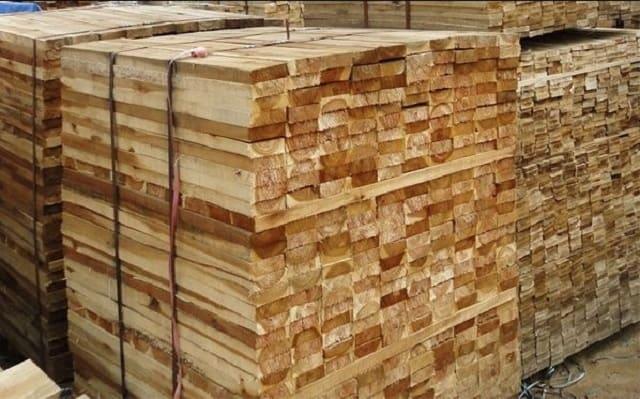 So sánh chất lượng gỗ tràm và gỗ xoan
